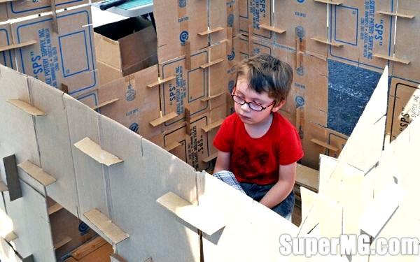 Фото: Як зробити будинок з картону: бюджетне житло для вихованців