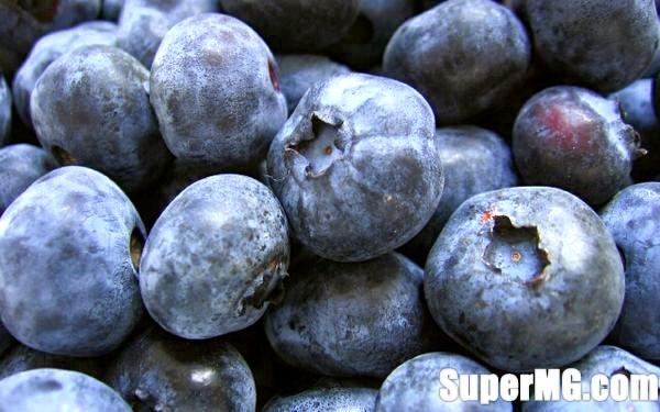 Фото: Користь чорниці для здоров'я: вкуснейшая дикорастущая ягода